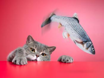 Spralla kissan lelu räpistelevä kala